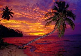 lisas-deal-of-the-week-island-dreaming