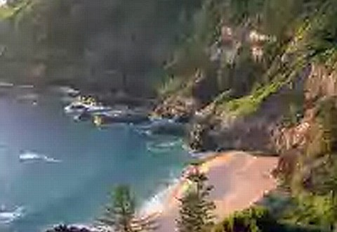 norfolk-island-blues
