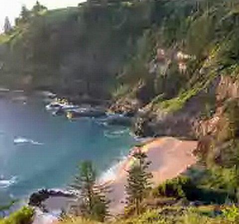 Norfolk Island blues