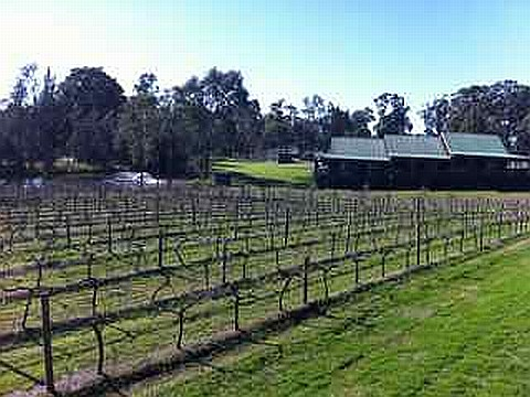 Hotel Review: The Hermitage Lodge, Hunter Valley NSW