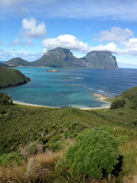 Lord Howe love-in