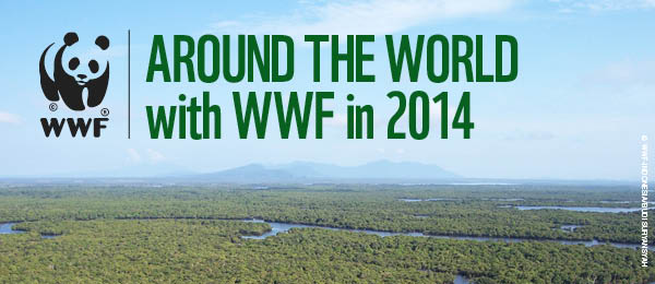 WWF launches wildlife tours