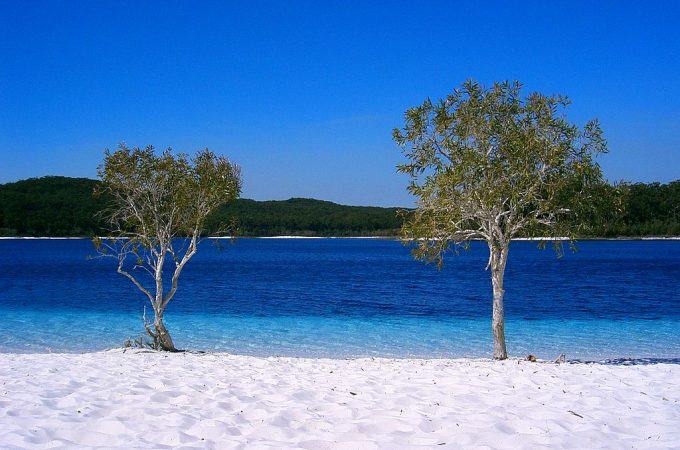 Return to Fraser Island