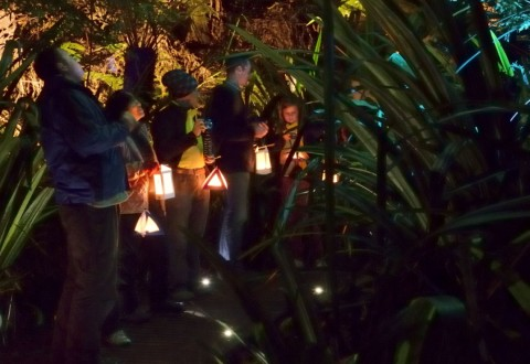 After Dark Lantern Tours in the Canberra Botanic Gardens are just one of the many attractions Australia's capital has to offer visitors