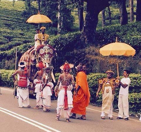 5 reasons to visit Sri Lanka