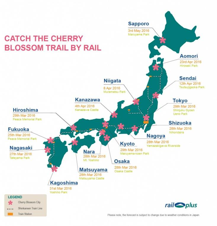 Cherry-blossom-train-map-983x1024