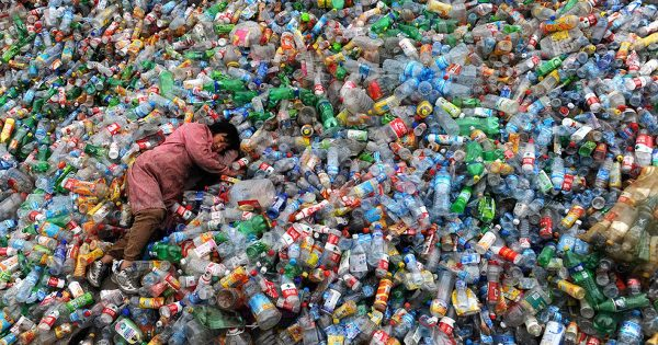 Plastic: IT'S EVERYWHERE