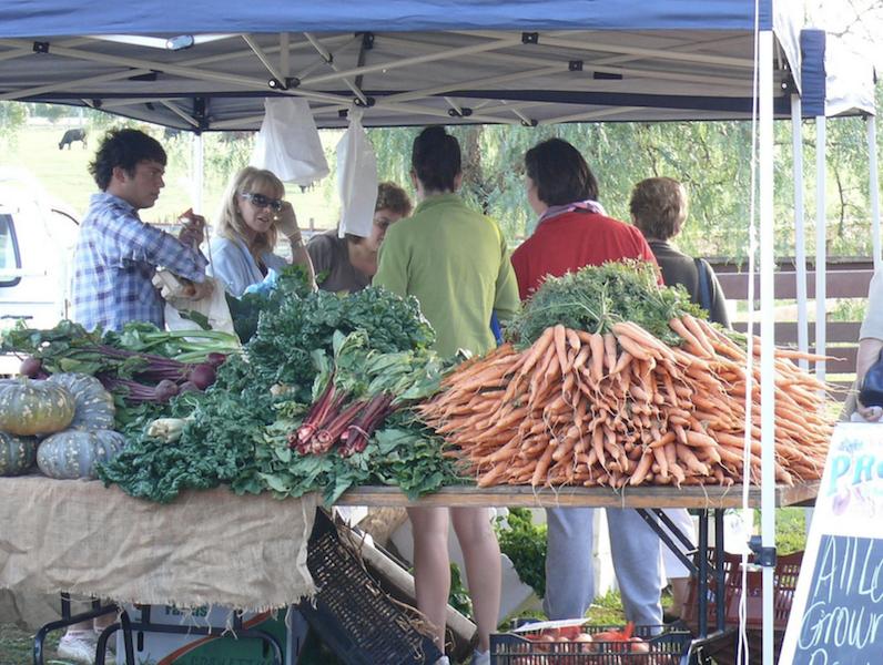 Camden Produce Market