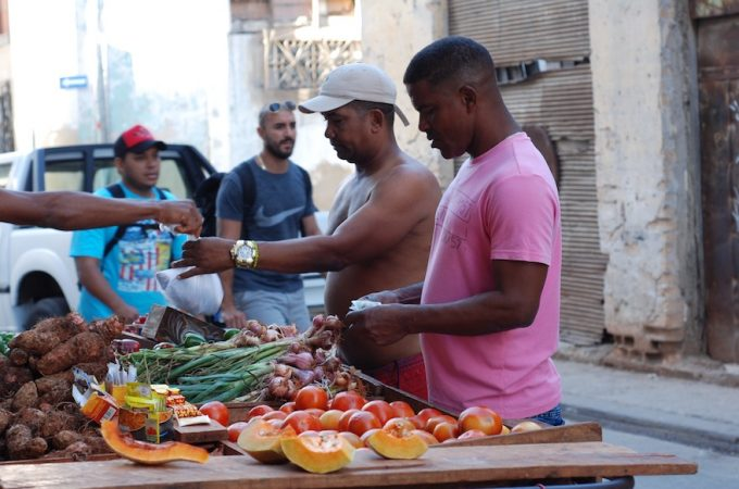 Three tips for vegans visiting Cuba